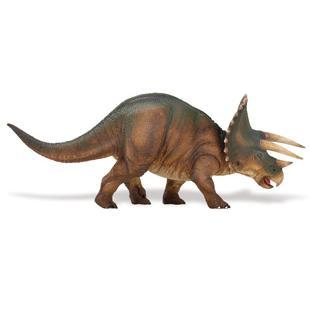 S284529 Triceratops