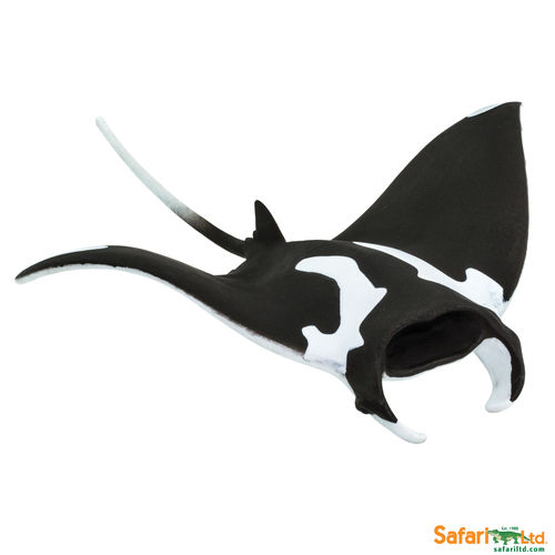 S100096 - Mantarochen - Sealife