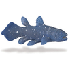 S285729 Dinosaurier - Coelacanth