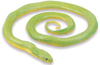 S257729 Rough Green Snake