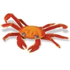 S261729 Galapogos Sally Lightfoot Crab - discontinued article 2020
