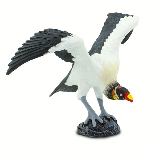 S100270 - King Vulture - Wings of the World